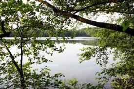Wichumer See (Foto: B. Heitmann)