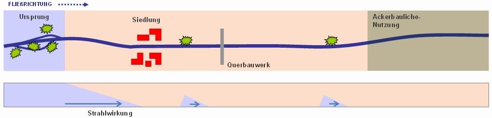 Vom Ursprung geht eine Strahlwirkung aus (Bild: B. Heitmann)