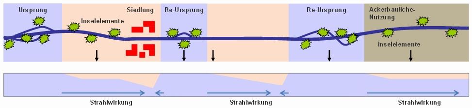 Inselelemente sind Verbindungsbereiche zwischen Re-Ursprung und Ursprungsabschnitte (Bild: B. Heitmann)