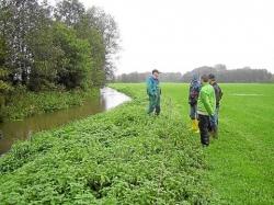 Unter Federführung der Unteren Wasserbehörde des Kreises wird in den nächsten Jahren die Wasserrahmenrichtlinie auch an der Dinkel umgesetzt. Foto: (sy)