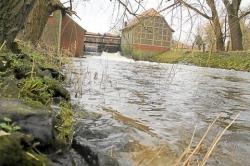 Das Wasser der Dinkel rauscht durch das Wehr an der Nienborger Mühle. Für Laien wirkt der Wasserstand recht hoch - die Pegelstände sind aber im grünen Bereich. Foto: (Frank Zimmermann)