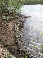Der Einbau der Faschinen erfolgt im Uferbereich.
