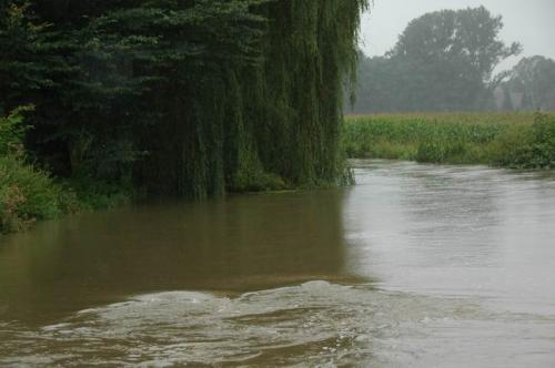 hochwasser 2010 016