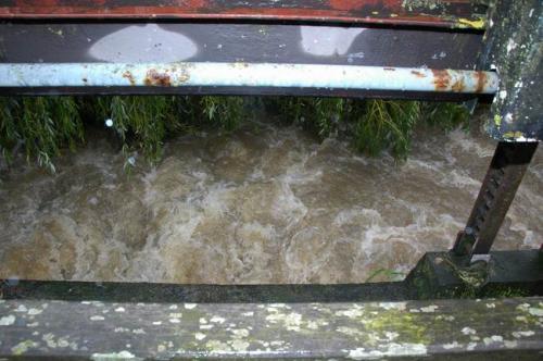 hochwasser 2010 019