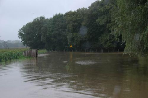 hochwasser 2010 023
