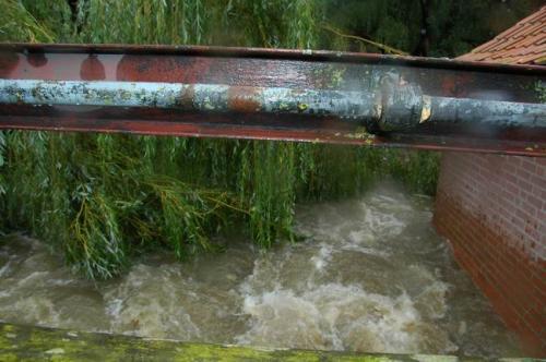 hochwasser 2010 027