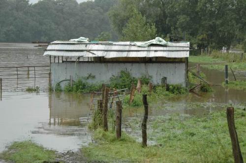 hochwasser 2010 055