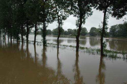 hochwasser 2010 061