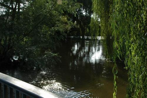 hochwasser 2010 063