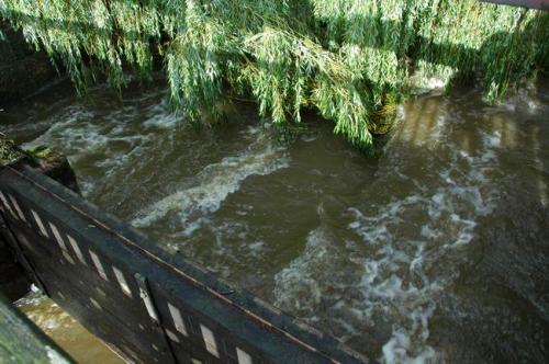 hochwasser 2010 067