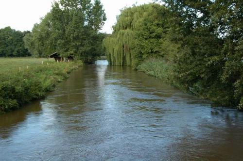 hochwasser 2010 077
