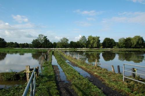 hochwasser 2010 083