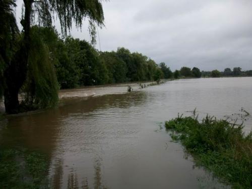 hochwasser 2010 102