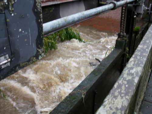 hochwasser 2010 113
