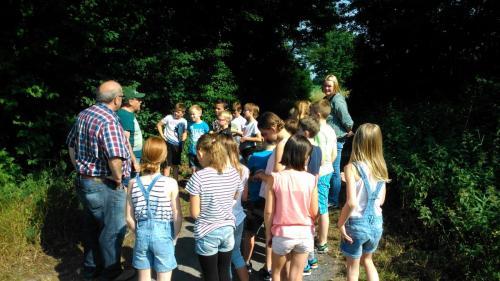 Kolloquium Grundschule 2017 (4)